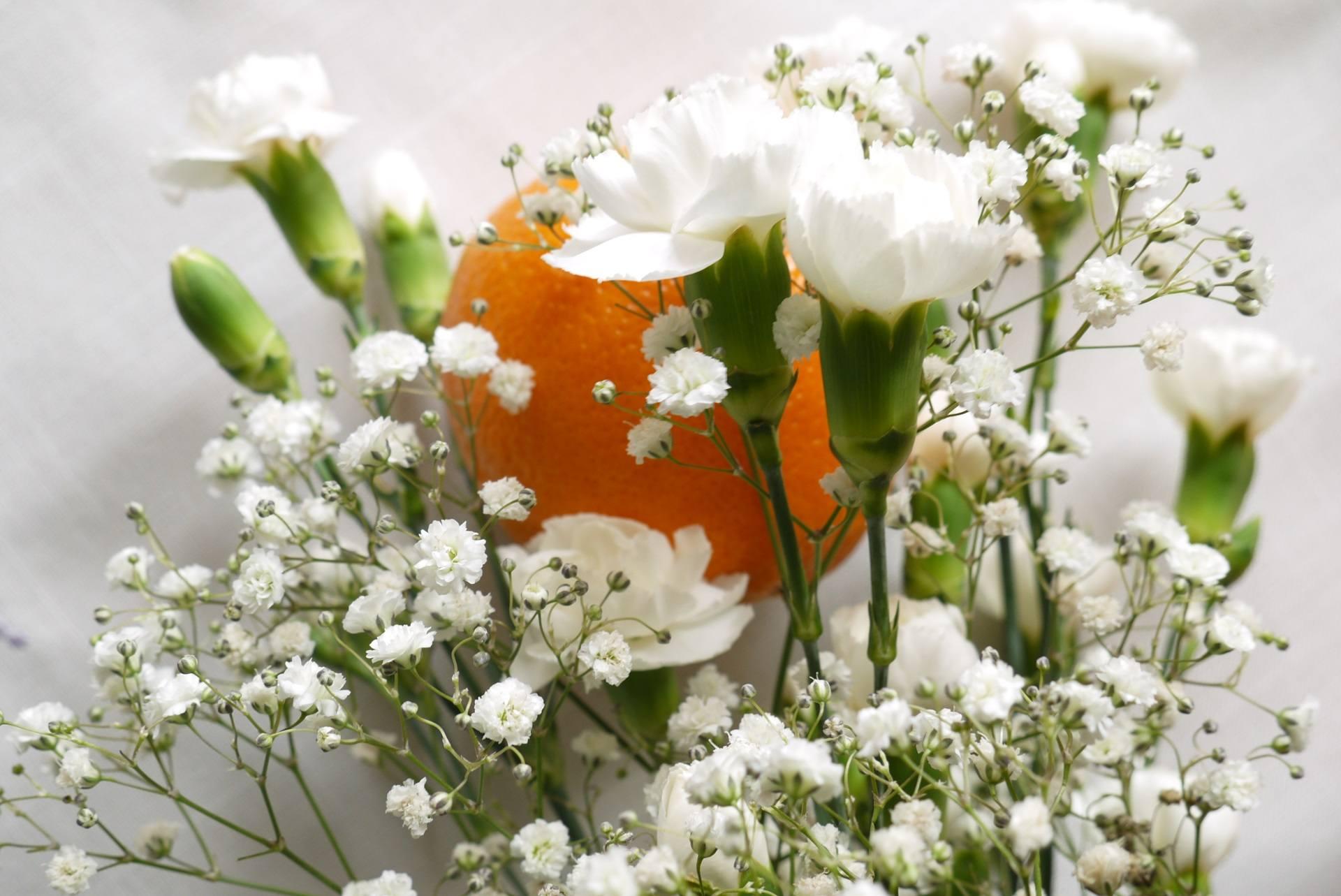 pomarańcza i kwiaty